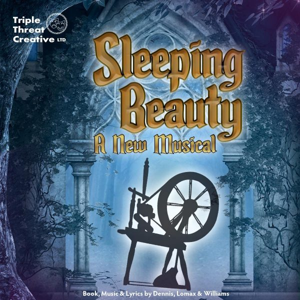 Sleeping beauty A New Musical Poster